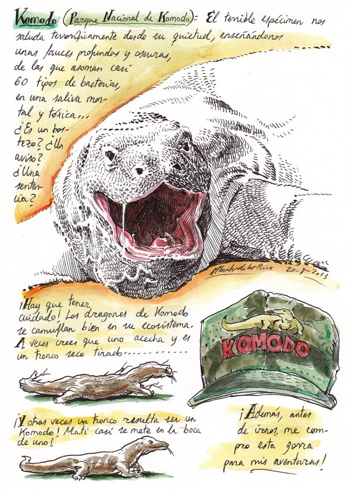 INDONESIA 2013 - Pág 089. KOMODO. Parque Nacional de Komodo (El terrible espécimen nos saluda)