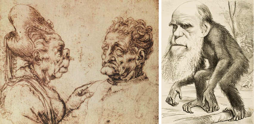 Leonardo Da Vinci - Caricaturas + John Tenniel - Darwin