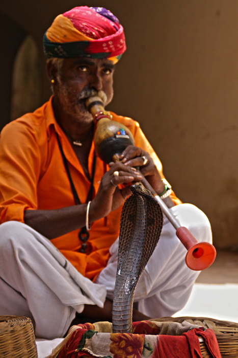 Música-y-danza-(Jaipur-2014)
