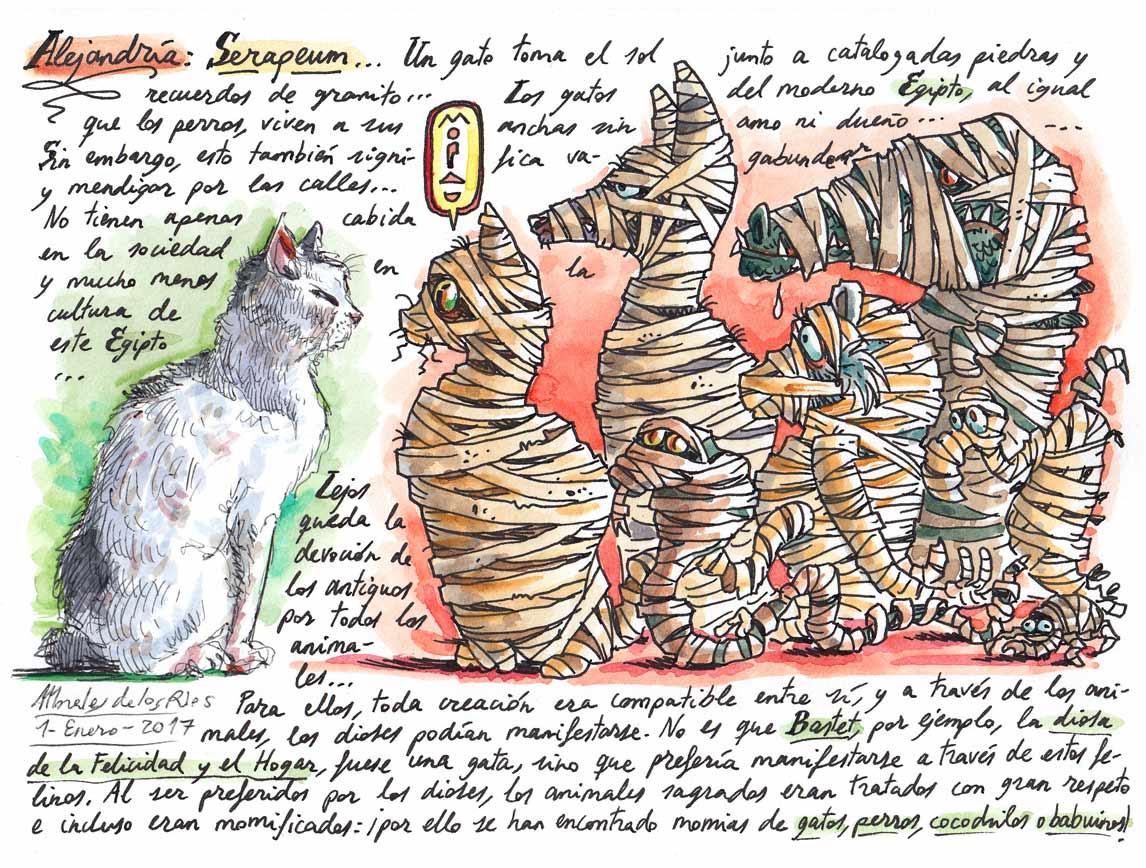 21. ALEJANDRÍA. Serapeum (Un gato toma el sol)