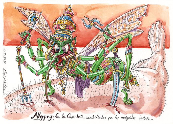 INDIA 2014 - Pág 114. ALLEPPEY. En la Casa-bote, acribillados por los mosquitos indios